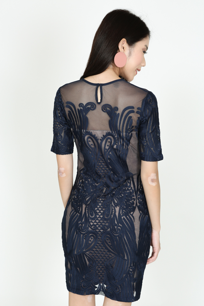Sheer Lace Dress in Midnight